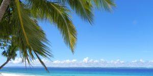beach-sea-coast-tree-ocean-shore-696848-pxhere.com